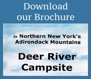 download Deer River Campsite Brochure